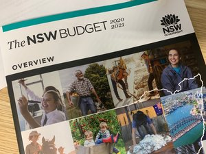 While this year's State Budget reflects a solid response to the economic challenges caused by the Covid pandemic, it's extremely disappointing that the Government and